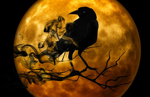 Full moon and crow